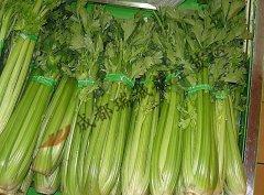 成都至拉萨的蔬菜航空运输